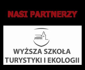 Logo WSTiE