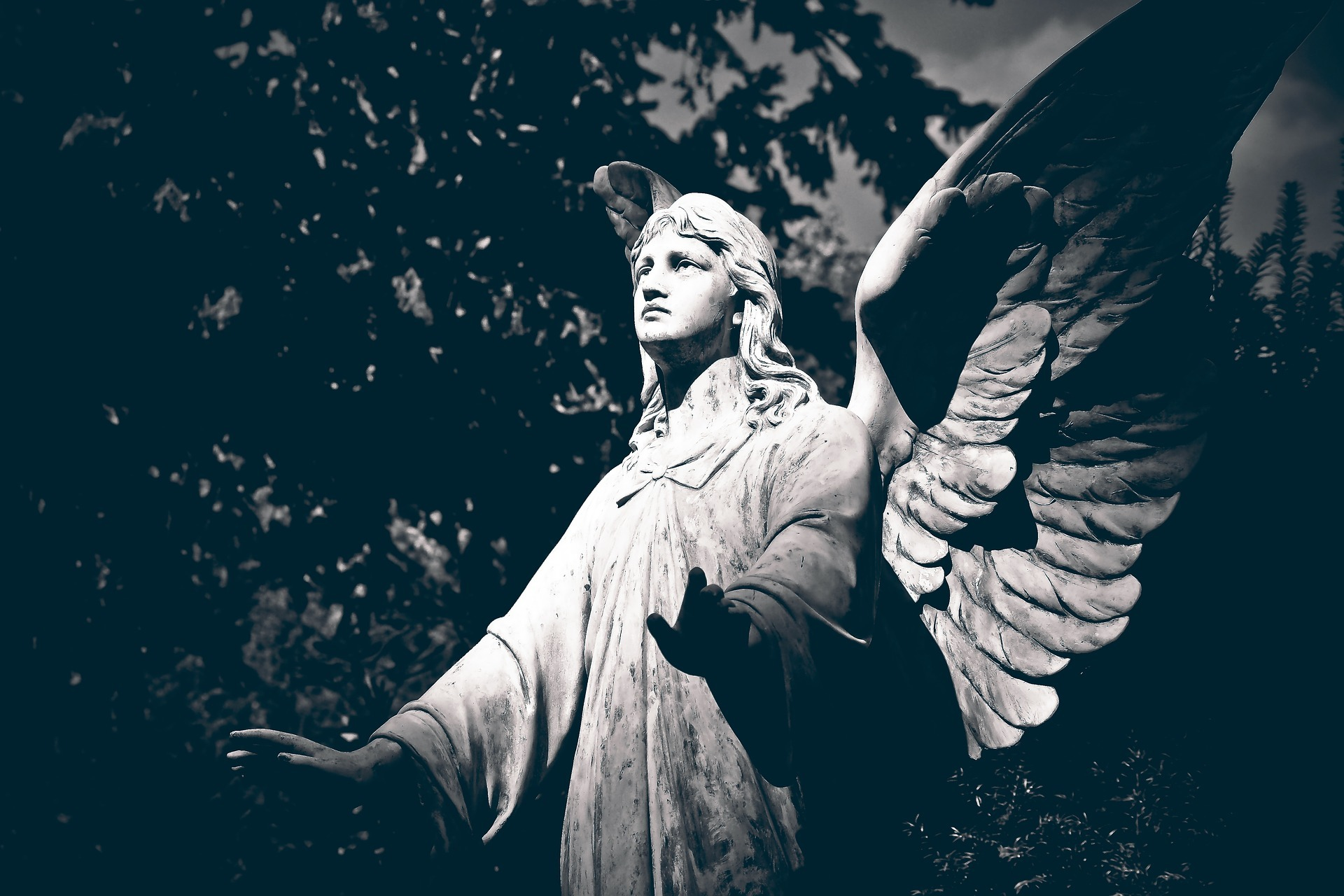 anioł cmentarny na te drzew